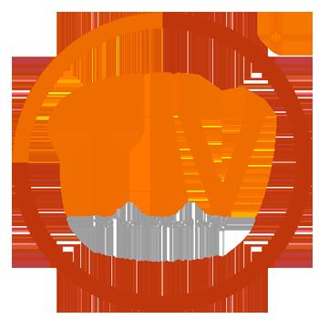 tiv360 logo